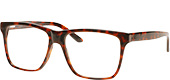 BL21004-Brown tortoise
